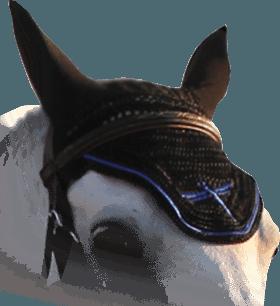 Horse equipment